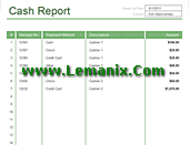 Cash Report Microsoft Excel Templates