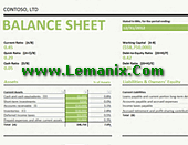 Microsoft Excel Templates Balance Sheet With Ratios