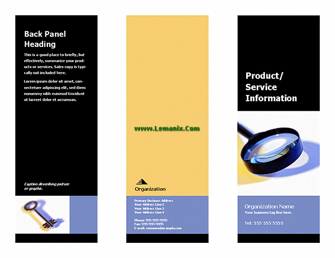 Informational Business Brochure Microsoft Publisher Templates