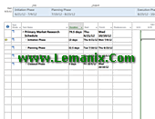 Market Research Schedule Project Management Template